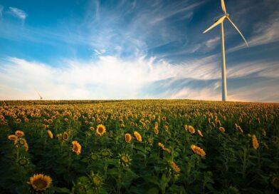 Le «renouvelable»: quand un mot mal défini risque de perturber le débat sur la transition écologique